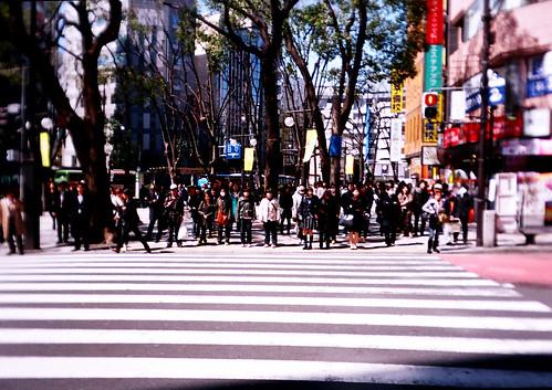 [Tokyo]冷空氣與熱陽光