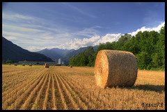 Tempo d'estate (franz75) Tags: summer italy nikon italia estate country campagna piemonte piedmont hdr grano campi covoni d80 canavese