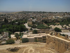 Fs, overlooking the Medina (xnmeme) Tags: honeymoon morocco fes fs