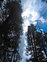 IMG_1105 (TYLERMG) Tags: twinlakes campingmammoth