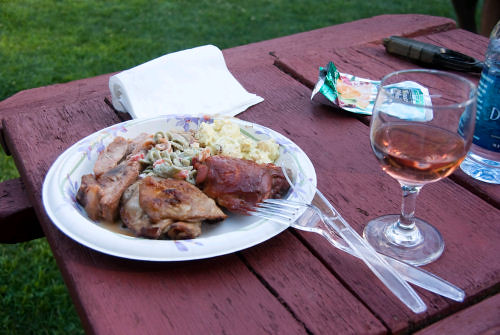 BBQ picnic with glass of wine