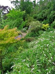 Gardens at Dunvegan Castle, Isle of Skye, Scotland (Paul McClure DC) Tags: skye scotland scenery isleofskye britain hebrides dunvegan dunvegancastle july2009