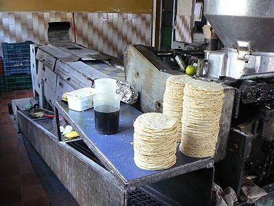 fabrication des tortillas.jpg