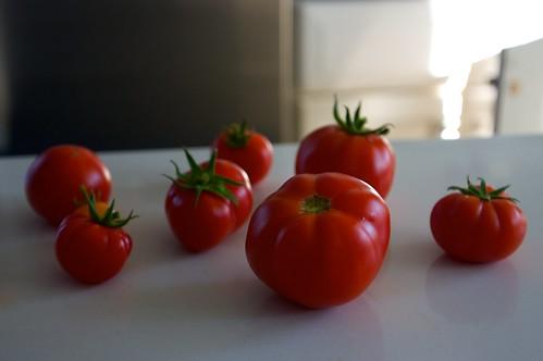tomato pluckage