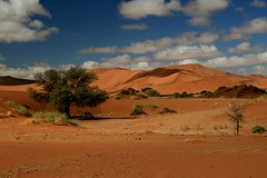 "Africa - Namibia / Sossusvlei / ナミビアで死んでいる木 (RURO photography) Tags: voyage africa travel blue orange color tourism sunrise landscape fun photography colours desert photos african vivid reis paisaje tourist paisagem colores ciel afrika lonelyplanet nuage paysage der landschaft namibia paesaggio sanddunes park"" nationalgeographic africain dune7 reizen sossusvlei namib discoverychannel kleuren woestijn 여행 deadvlei dune45 naukluft supershot namibië kartpostal 아프리카 enstantane anawesomeshot voyageursdumonde namibsky journalistchronicles kleurenpracht globalbackpackers τησ discoveryphoto discoveryexpeditions ναμίμπια ナミビア 나미비아 намибия σαφάρι αφρικήσ アフリカのサファリ rudiroels inspiredelite loszand l'afric ""namib ""sanddüne namib"" sandcurves"