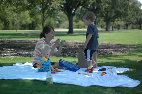 picnic at zilker
