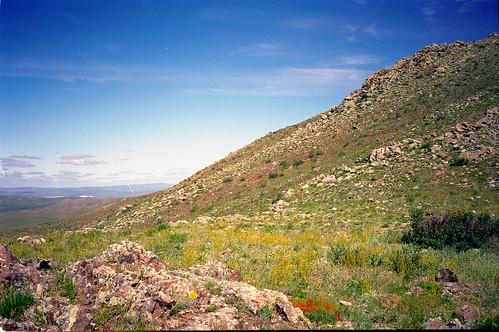 gun galuut nature reserve