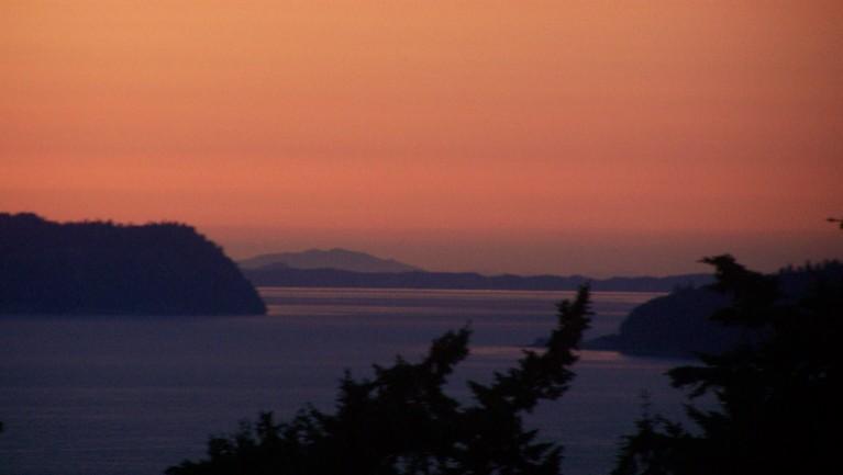 jj 226 Orange horizon