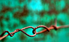 Bound (ewitsoe) Tags: world seattle old abstract macro green art strange lines weird washington wire nikon focus rust barrels explore wires edge form chemical abrasion d80 mcobj