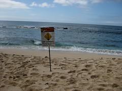 Rip Currents // Hawaii