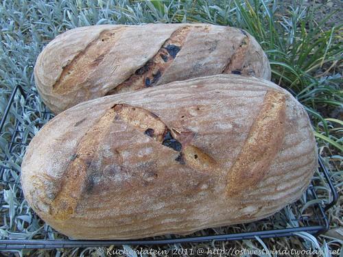 Weizenbrot mit gerösteten Haselnüssen und Backpflaumen 001
