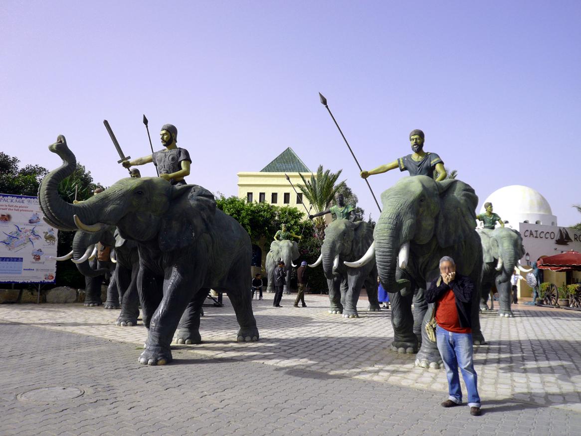 MEDINAJASMINEelefantes
