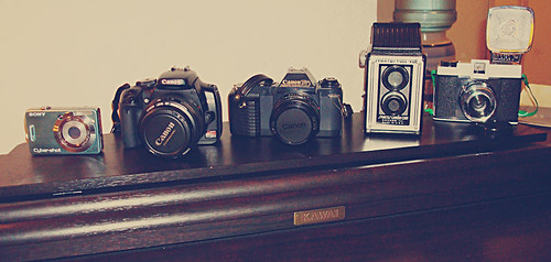 146/365 - The Collection