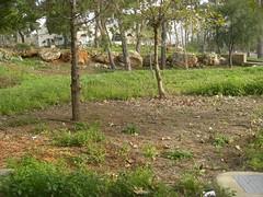 maich gardens
