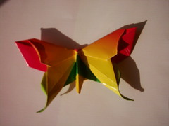 flutur3 (anamoniq) Tags: butterfly origami paperfolding