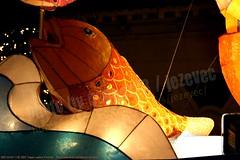 2007-03-03 1130 2007 Taipei Lantern Festival (Badger 23 / jezevec) Tags: festival night lights pig colorful taiwan parade taipei formosa float  hai taipeh boar  lanternfestival 2007  chineselantern  chiangkaishekmemorialhall  republicofchina yearofthepig    aonuevochino  capodannocinese   taiwn chaingkaishek   20070303    tapeh    badger23 shangyuanfestival ftedeslanternes     lyhtyjuhla chinesischeslaternenfest