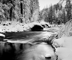 Icy Stream | Yosemite National Park, USA (ART SRISAK | PHOTOGRAPHY) Tags: california bw reflection mamiya film mediumformat yosemite delta100 colorless waterscape monart autaut rb67pros filmforward artsrisak ilfoard