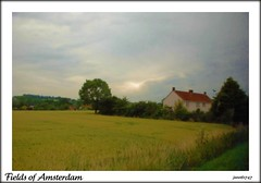 Netherlands (janetfo747 ~ Pray for Peace) Tags: trees sky tree green home netherlands grass amsterdam yellow farmhouse path farm country explore pasture chapeau fields fabulous 1001nights picturesque soe picnik wow1 wow2 wow3 mywinners diamondclassphotographer flickrdiamond theunforgettablepictures theperfectphotographer goldstaraward flickrestrellas natureselegantshots ourmasterpieces goldenheartaward 100commentgroup lesamisdupetitprince photographersworldbestfriends gasssland doublyniceshot tripleniceshot mygearandme mygearandmepremium mygearandmebronze mygearandmesilver