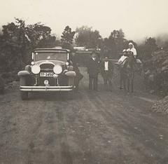 Coche y caballo Icod 1936