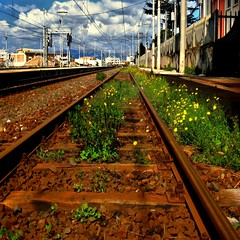 Spring On The Rails (Osvaldo_Zoom) Tags: railroad flowers primavera grass train spring rust blossom ruggine binari railroadstation treni naturewins rrtracks