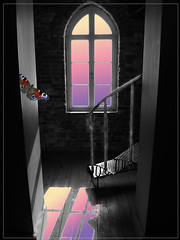 The Windows Beyond (ZedZap Photos) Tags: tower window butterfly stair staircase fisgard esquimalt colwood fisgardlighthouse fortroddhill zedzap