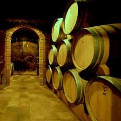 Buen vino, también en la provincia de Córdoba
