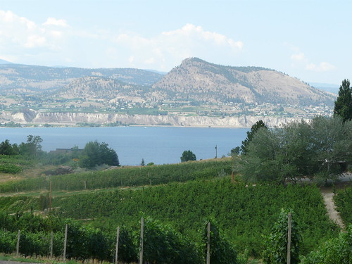Therapy vineyards with Lake Okanagan in the background