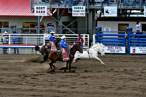 BroncCodyRodeo080509