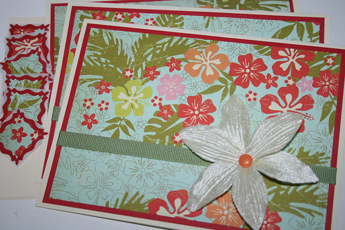 Set of 3 Hawaiian Floral Cards