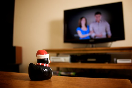 Duckguin watches TV