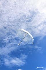 "Flying Umbrella Of ""LOVE"" (My Handmade Birthday Gift For My Girlfriend 2009) / ร่มลอยฟ้า"
