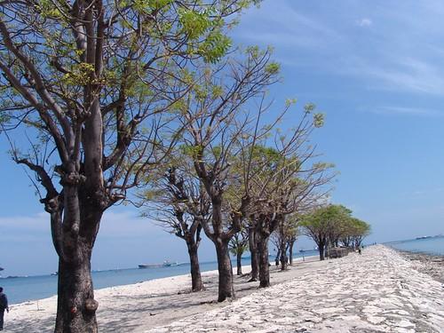 Lae Lae Pulau Wisata Yang Menanti Uluran Pemerintah Daerah Sulawesi