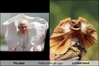 the-pope-totally-looks-like-a-frilled-lizard