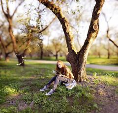 (mblsha) Tags: bokehrama afdcnikkor135mmf2d girl brenizermethod tree manga book appletree latex mtcandidate