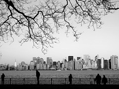 arteries (nardell) Tags: newyorkcity people tree skyline buildings islands manhattan branches strangers silhouettes systems growth arteries groups libertyisland separation connections