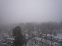 19309 Winter (golli43) Tags: schnee winter sunset clouds leute familie katzen freunde westend nachbarn charlottenburg eisblumen alltag strassen kristalle heelammun