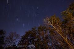 Star Trails (t.sullivan photography) Tags: longexposure nightphotography night stars backyard startrails tsullivanphotography wwwtsullivanphotographycom