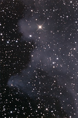 IC2118 (-mrh) Tags: orion st8xme ic2118 Astrometrydotnet:status=solved mach1gto Astrometrydotnet:version=10392 Astrometrydotnet:id=alpha20090237887688