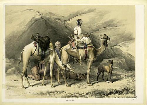 Una parada con los dromedarios en el desierto del Este 1851
