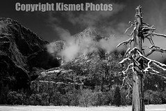 Barren B&W (Kismet Photos) Tags: trees winter blackandwhite mist mountain snow tree ice rock clouds yosemite elcapitan
