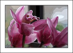 Dreams Delight (janetfo747) Tags: pink plant orchid flower beautiful garden spring soft purple tales pastel dreams tropical striking soe visualart cymbidium orchis fary angiospermae blueribbonwinner dancingladies supershot bej fineartphotos abigfave supershots abigfav platinumphoto diamondclassphotographer flickrdiamond goldstaraward natureselegantshots ourmasterpieces rubyphotographer qualitypixels goldenheartaward flickrflorescloseupmacros panoramafotogrfico bestofthbest thebestofmimamorsgroups greatshotss cymbidiuml