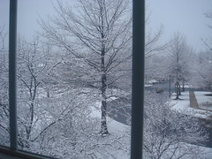 Snow on March 20, 2009!