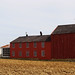 Amish Sheds and Barns