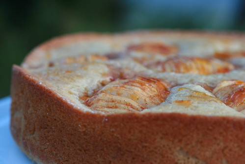 Donna Hay Apple and Cinnamon Tea Cake