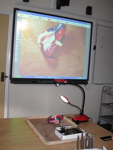 Visualiser Training