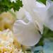 0903 bouquets #5