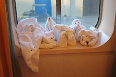 All the towels, Carnival Conquest (Possum Inc.) Tags: cruise towels carnivalconquest carnivalcruises