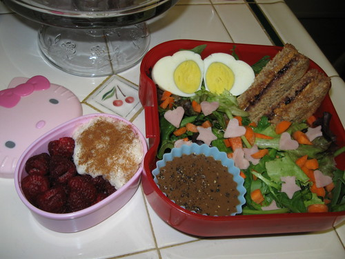 raspberries and rice pudding, and salad with balsalmic vinegrette and peanut butter and blackberry jelly sandwich