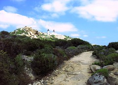 Capu di Senetosa : le phare