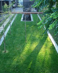 Flickr Landscaping  (9) (Badec Bros Landscaping) Tags: flowers trees summer flower tree art architecture modern garden landscape contemporary stunning waterfeature irrigation gabions koiponds landscapingarchitecture moderngardens badec kingfisherlandscaping badecbroslandscaping gabionwaterfeatures badecbrosdeco featurepoles